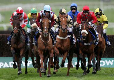 Horse racing scunthorpe
